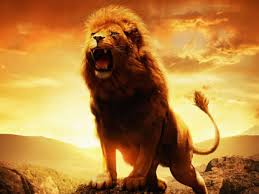 risveglio leone
