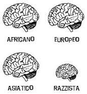 razzismo cervello