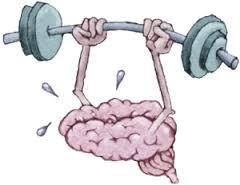 usare cervello