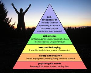 piramide dei valori