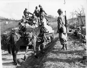 Alleati in montagna 1945